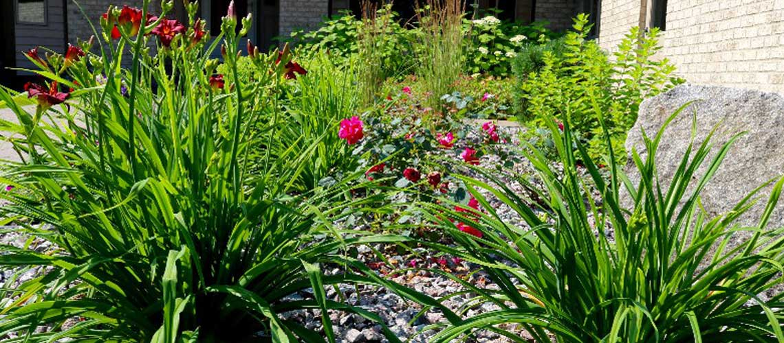 Perennial Garden Design and Installation