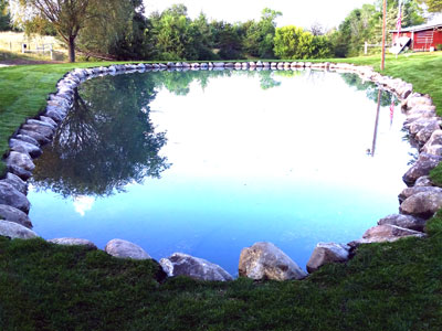 Natural Ponds, Water Falls and Water Fountain Design & Installation